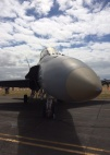 One of the RAAF's 'classic' Hornets on static display duties