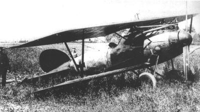 Richthofen's Albatros D.Va stands in a field near Wervicq, Belgium, after he was forced to land with a serious head wound on July 6th, 1917. (wikipedia)