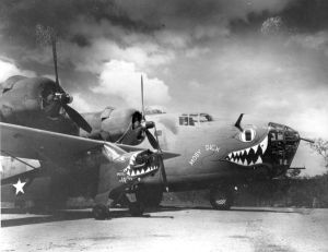 "Piper L-4 ""Moby Dick Jr and its larger namesake, serving with the 320th BS, 90th BG, 5th AF, most likely in Northern Queensland, 1943. The Liberator, B-24D-15-CO #41-24047 (msn 841) survived the war, but not the salvage-men afterwards. (SDASM AL-237-030)"