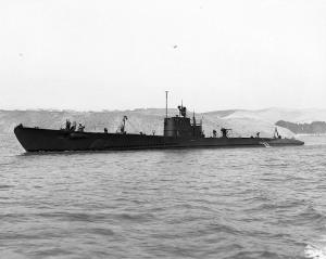 USS Porpoise (SS 172)
