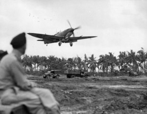 Ready to belie its reputation for being 'delicate', a RAAF Spitfire Mk.VIII approaches a rough new strip on Balakpapan, in 1944. (State Library of Victoria)